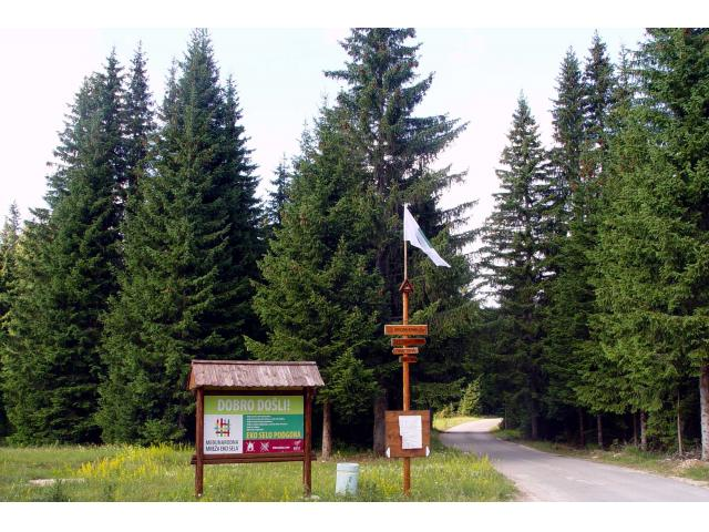 Perfect land for sale Durmitor,Zabljak,Montenegro,Good price